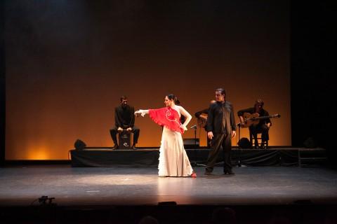 Emociones flamencas