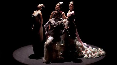 Compañía de Flamenco y Danza Española Mediterraneo